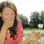 Salute: rimedi naturali contro le allergie stagionali