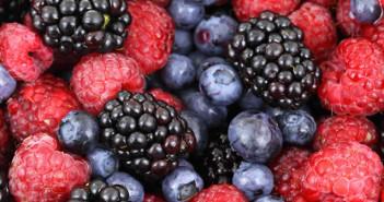 dieta frutti di bosco