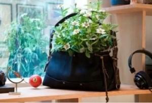 borsa ecologica
